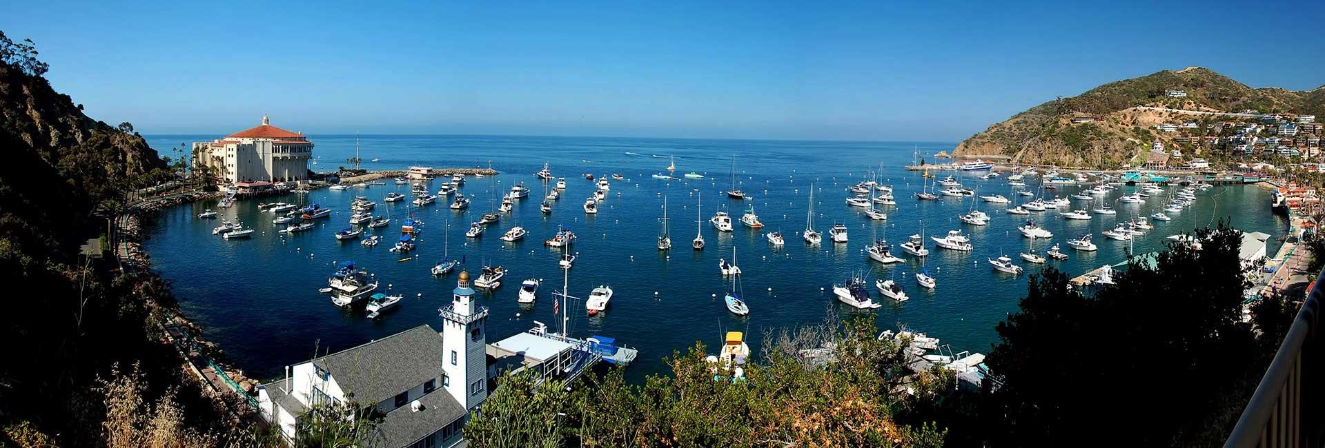 Boats at CATALINA ISLAND