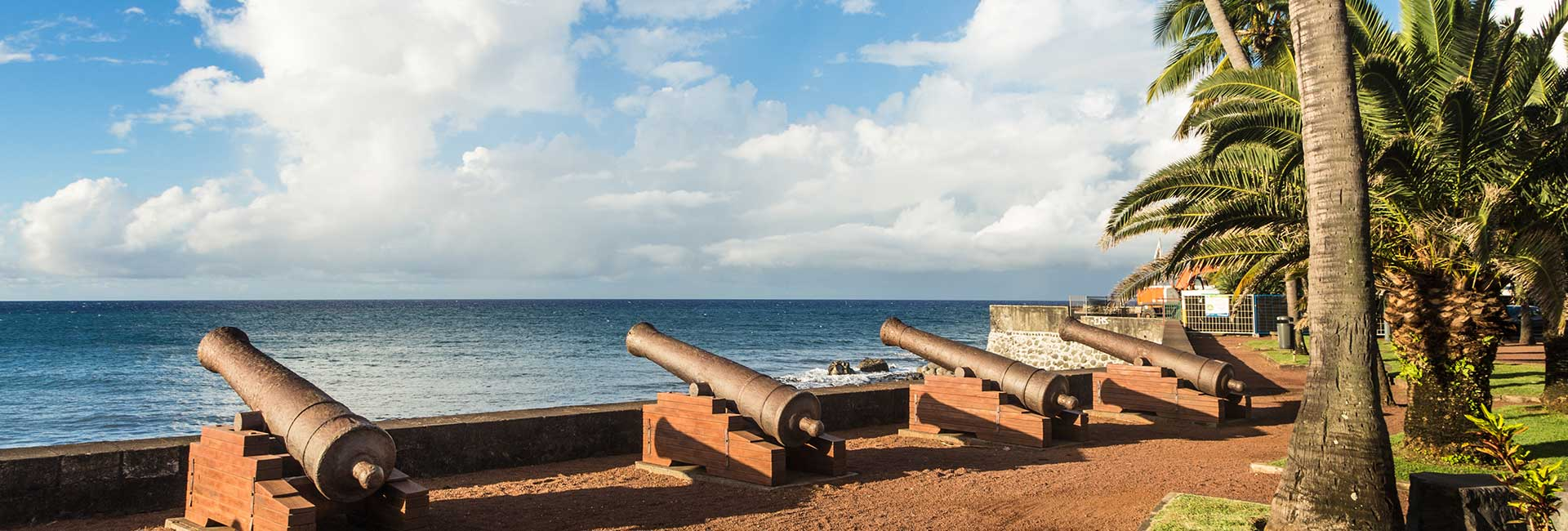 Canons on beach