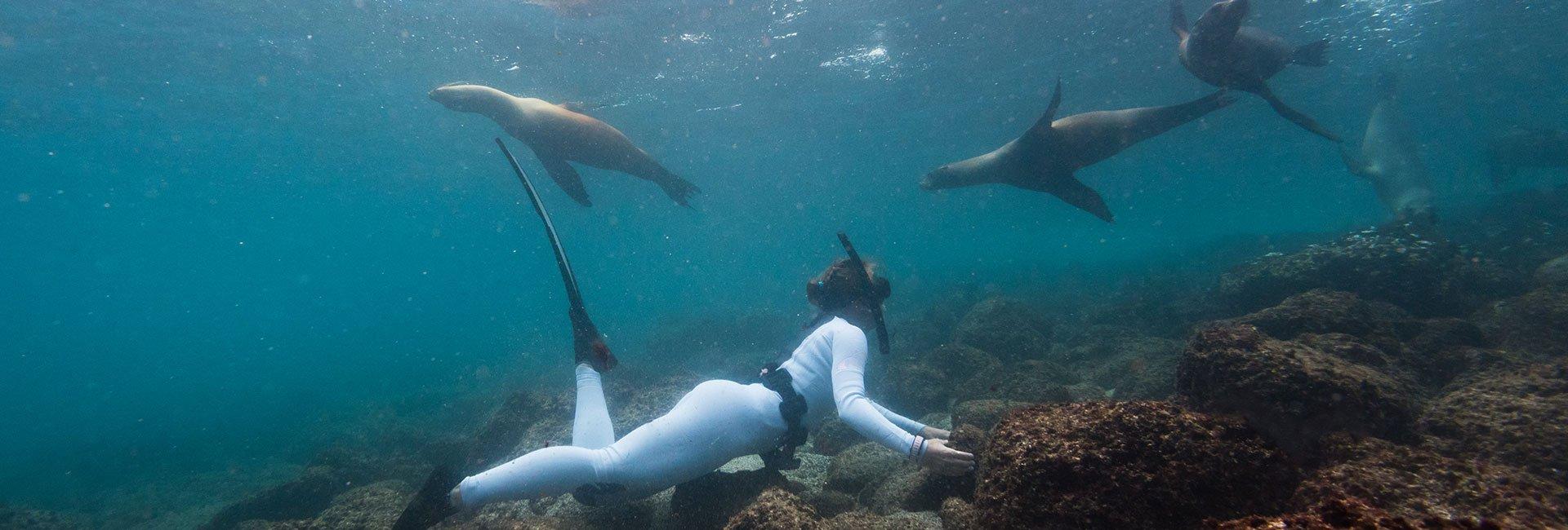 8_Underwater_Splender